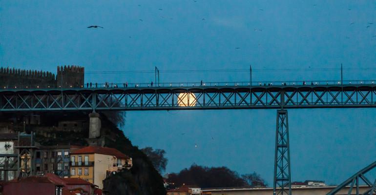 Amb la lluna a l'esquena. Daily Photo #271