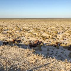 Mar d'Aral. Moynack.