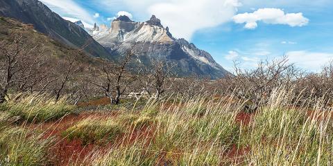 Cuernos del Paine. Parc Nacional Torres del Paine. Xile