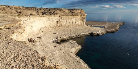 Lobería de Puerto Pirámides. Península Valdés. Argentina.